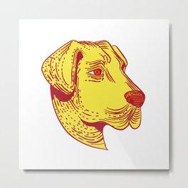 Anatolian Shepherd Dog Head Etching Color Metal Print