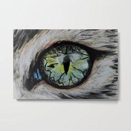 A cat eye, Amazing eyes, pet, original art by Luna Smith Art, LuArt Gallery Metal Print