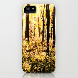 The Woods at Golden Hour iPhone Case