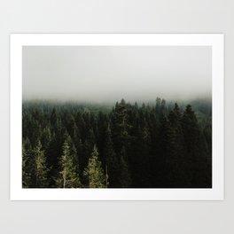 Stevens Pass Art Print