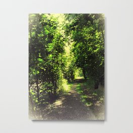 I'll go another way Metal Print