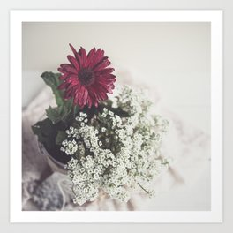Red Daisy Soft and Airy Square Art Print
