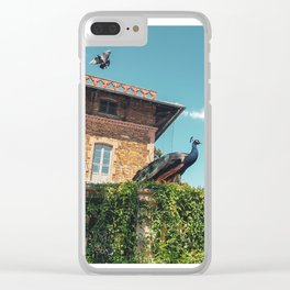 Two birds with one stone - flying pigeon and posing peacock Clear iPhone Case