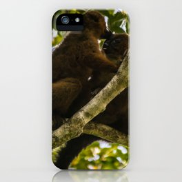 Kisses in the Wild iPhone Case