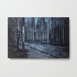 Path Through The Trees Metal Print