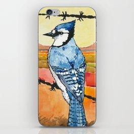 Blue Jay in the Desert iPhone Skin