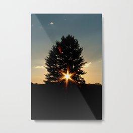 Starlight by Matthew Scrivner Metal Print