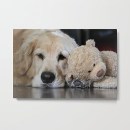 Golden Retriever with Best Friend Metal Print