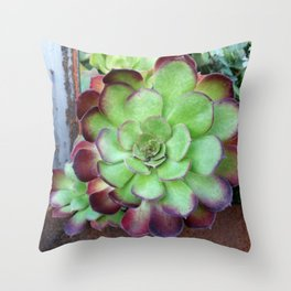 The Rusty Succulent Throw Pillow