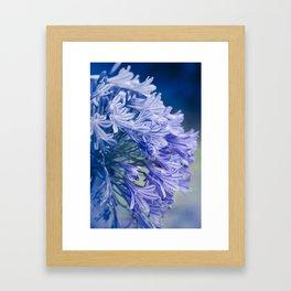 Born into Colour Framed Art Print