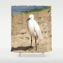 A friendly Heron on the beach Shower Curtain