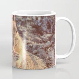 Happy Fluffy Squirrel Coffee Mug