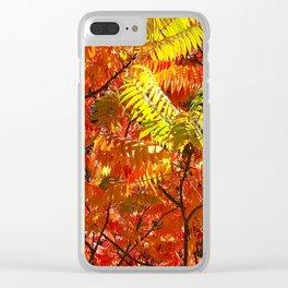 Rowan Panorama Clear iPhone Case