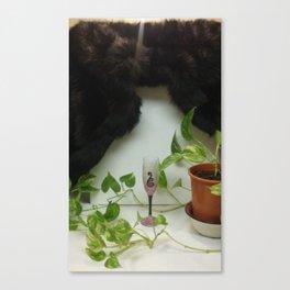 Mink 'n Sparkle Elegance Canvas Print