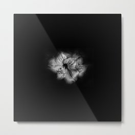 Black and White Lily Metal Print