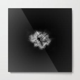 Black and White Lily Metal Print