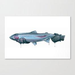 Salmon River Steelhead Canvas Print