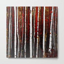 Dark Birch Forest Metal Print