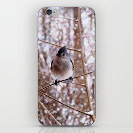 Tufted Titmouse Bird iPhone Skin