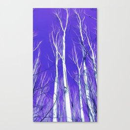 White Trees Intense Blue Sky In February Canvas Print