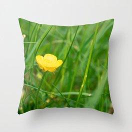 Yellow buttercup in summer Throw Pillow