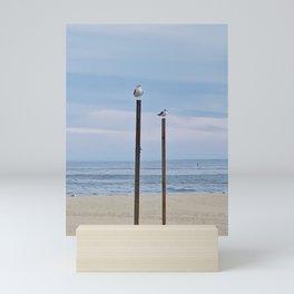 Perched Seagulls Mini Art Print