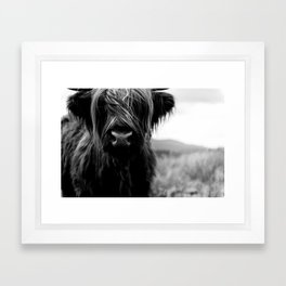Scottish Highland Cattle Baby - Black and White Animal Photography Framed Art Print