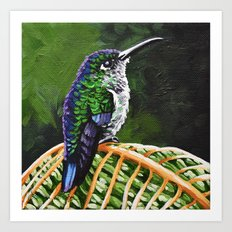 Many Spotted Hummingbird Art Print