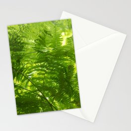 Fern in the forest, spring fresh green Stationery Cards