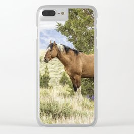 Stallion Relaxing on So Steens Mountain Clear iPhone Case
