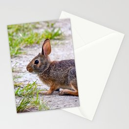 """""""Little Nibbler"""" Stationery Cards"""