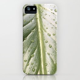 Green Leaf Detail with Rain Drops iPhone Case