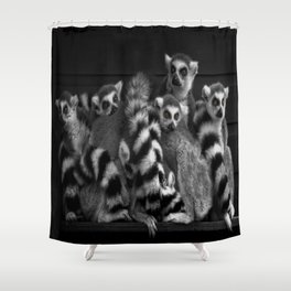 Gang Of Ring-Tailed Lemurs Shower Curtain
