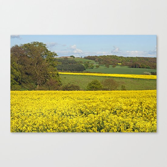 Bands Of Gold Canvas Print