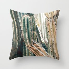 Desert Ombre Throw Pillow