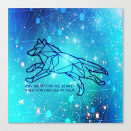 Livin in the Stars Canvas Print