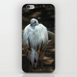 Cunning Flamingo iPhone Skin
