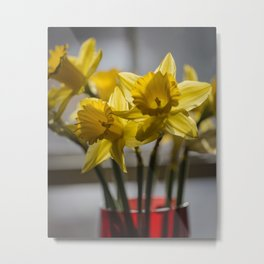 Daffodils in Red Crystal vase from my photography collection Metal Print