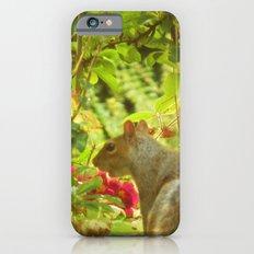 SecretGarden  Slim Case iPhone 6s