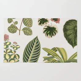 Botanical Green Plants Watercolor Painting Rug