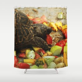 Colorful Food !! Shower Curtain