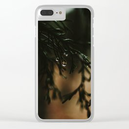 Water Drops from Winter Fir Branch Clear iPhone Case