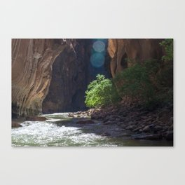Meeting It's End (The Narrows, Zion National Park, Utah) Canvas Print