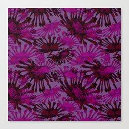 African Daisy Canvas Print