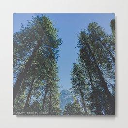 Forest Peak Metal Print