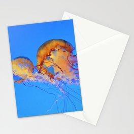 Chrysaora Stationery Cards