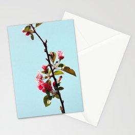 apple blossom analog Stationery Cards