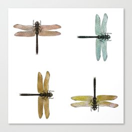 Mystical Dragonfly Graphic Pattern Canvas Print