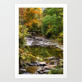 Fall Creek Landscape Art Print