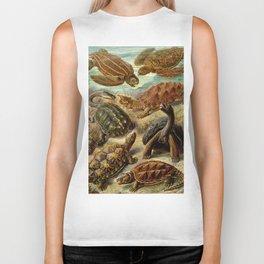 Sea Turtle Collage-Ernst Haeckel Biker Tank